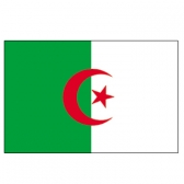 Algeria flags    High-Quality 2-ply Car Window Flag With Clip Attachment