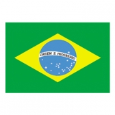 Brazil Flags     High-Quality 1-ply Car Window Flag With Clip Attachment