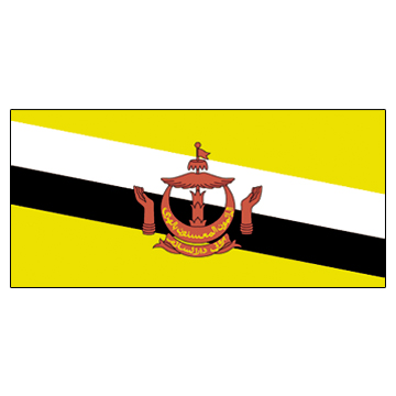 Brunel Flags     High-Quality 1-ply Car Window Flag With Clip Attachment