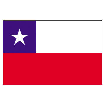 Chile Flags     High-Quality 1-ply Car Window Flag With Clip Attachment