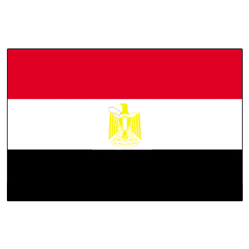 Egypt Flags     High-Quality 1-ply Car Window Flag With Clip Attachment