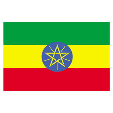 Ethiopia Flags     High-Quality 1-ply Car Window Flag With Clip Attachment