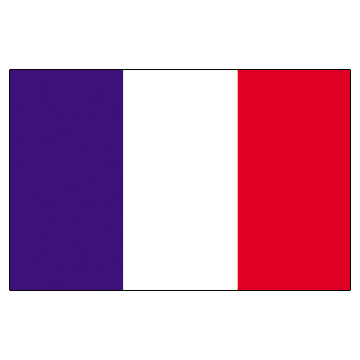 France Flags      High-Quality 1-ply Car Window Flag With Clip Attachment