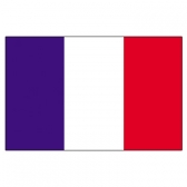 French Guiana Flags      High-Quality 1-ply Car Window Flag With Clip Attachment