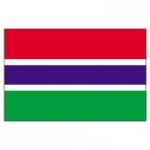 Gambia Flags      High-Quality 1-ply Car Window Flag With Clip Attachment