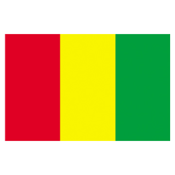 Guinea Flags      High-Quality 1-ply Car Window Flag With Clip Attachment