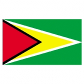 Guyana Flags      High-Quality 1-ply Car Window Flag With Clip Attachment