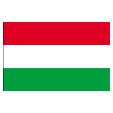 Hungary Flags      High-Quality 1-ply Car Window Flag With Clip Attachment