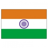 India Flags      High-Quality 1-ply Car Window Flag With Clip Attachment