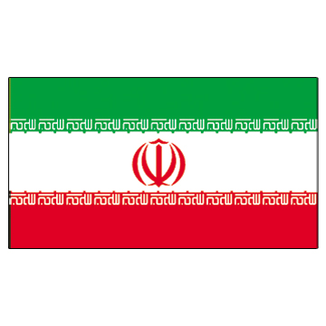 Iran Flags      High-Quality 1-ply Car Window Flag With Clip Attachment