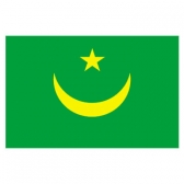 MauRitania Flags      High-Quality 1-ply Car Window Flag With Clip Attachment