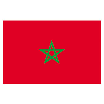 Morocco Flags      High-Quality 1-ply Car Window Flag With Clip Attachment