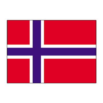 Norway Flags      High-Quality 1-ply Car Window Flag With Clip Attachment