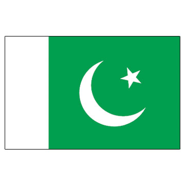 Pakistan Flags      High-Quality 1-ply Car Window Flag With Clip Attachment
