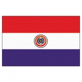 Paraguay  Flags      High-Quality 1-ply Car Window Flag With Clip Attachment