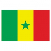 Senegal Flags      High-Quality 1-ply Car Window Flag With Clip Attachment