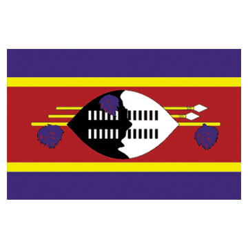 Swaziland  Flags      High-Quality 1-ply Car Window Flag With Clip Attachment