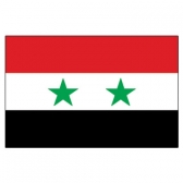 Syria  Flags      High-Quality 1-ply Car Window Flag With Clip Attachment