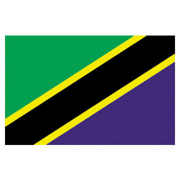 Tanzania  Flags      High-Quality 1-ply Car Window Flag With Clip Attachment