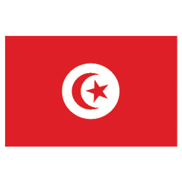 Tunisia  Flags      High-Quality 1-ply Car Window Flag With Clip Attachment