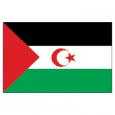 Western Sahara Flags      High-Quality 1-ply Car Window Flag With Clip Attachment