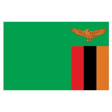 Zambia Flags      High-Quality 1-ply Car Window Flag With Clip Attachment